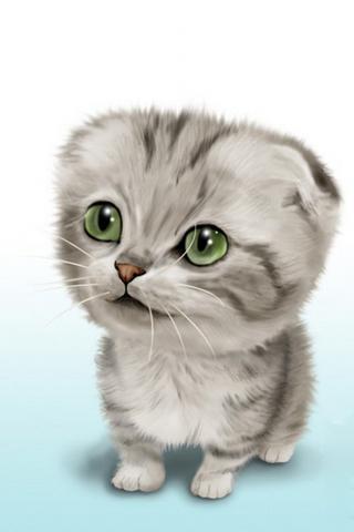 iphone手机猫咪高清壁纸